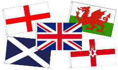 Best Selling Courtesy Flags
