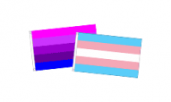 Transgender Flags