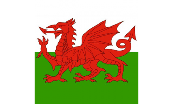 Wales Bandana