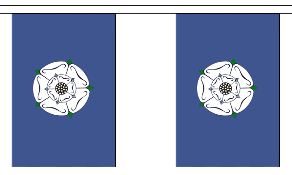 Yorkshire Old Bunting