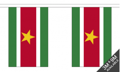 Suriname Buntings