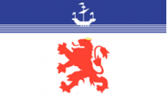 Devon Lion Flags