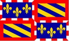 Burgundy Flags