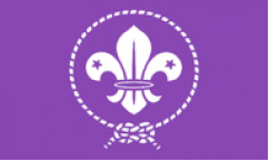 Scouts Purple Flags