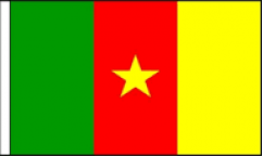 Cameroon Hand Waving Flags