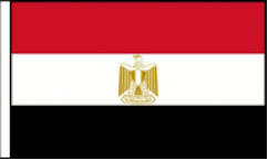 Egypt Hand Waving Flags