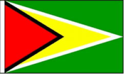 Guyana Hand Waving Flags