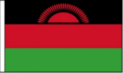 Malawi Hand Waving Flags