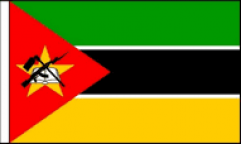 Mozambique Hand Waving Flags