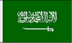 Saudi Arabia Hand Waving Flags