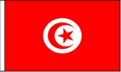 Tunisia Hand Waving Flags