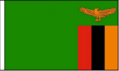 Zambia Hand Waving Flags