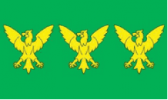 Caernarfonshire Table Flags