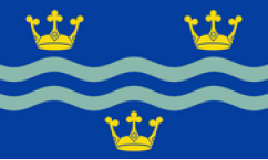 Cambridgeshire Blue Table Flags