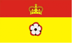 Hampshire Table Flags