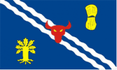 Oxfordshire Table Flags