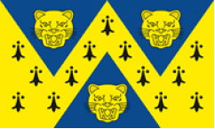 Shropshire Table Flags