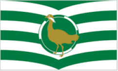 Wiltshire Table Flags
