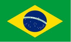Brazil World Cup 2018 Flags