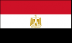 Egypt World Cup 2018 Flags