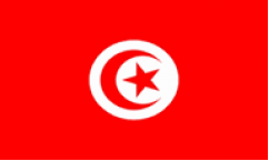 Tunisia World Cup 2018 Flags
