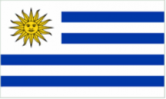 Uruguay World Cup 2018 Flags