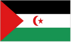 Western Sahara Flags